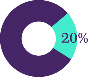 20% Donut Graph